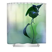 The Unbearable Lightness Of Being. Natural Wonders Shower Curtain