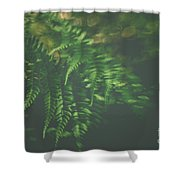 The Understory Shower Curtain