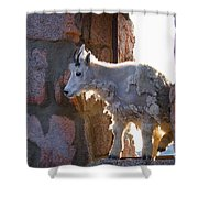 The Unexpected Guest Shower Curtain
