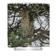 The Vantage Point Shower Curtain