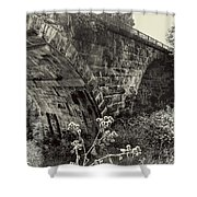 The Viaduct Shower Curtain