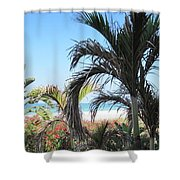 The View Of Paradise Shower Curtain