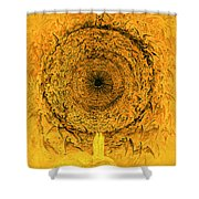 The Vision Of The Empyrean Shower Curtain