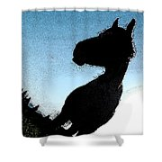 The Visiter Shower Curtain