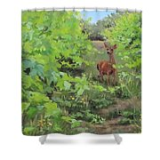 The Visitor Shower Curtain