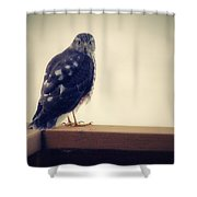 The Visitor Lake Huron Michigan Shower Curtain