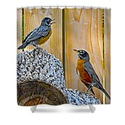 The Voice Lesson Shower Curtain