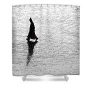 The Wanderer.. Shower Curtain