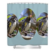 The Warbler Shower Curtain