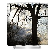 The Washington Monument Lost In The Trees Shower Curtain