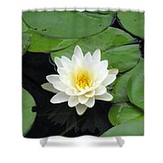 The Water Lilies Collection - 01 Shower Curtain