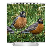 The Welcoming Committee E186 Shower Curtain