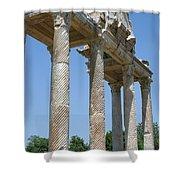 The Western Pediment Of The Tetrapylon Shower Curtain by Tracey Harrington-Simpson