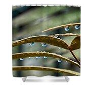 The Wet Of The Rain V2 Shower Curtain
