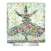 The Whirling Sufi Shower Curtain