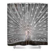 The White Peacock Shower Curtain