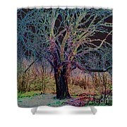 10994 The Widow Tree Shower Curtain