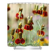 The Wildest Of Flowers Shower Curtain