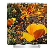 The Wildflowers Are Here And Spring Has Arrived Shower Curtain