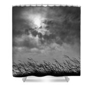 The Wind That Shakes The Grass Shower Curtain