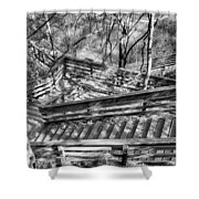 The Winding Stairs Shower Curtain