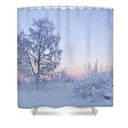 The Winter Light Shower Curtain