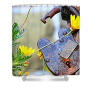 The Wise Owl Padlock - Cambria California  Shower Curtain