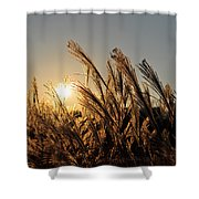 The Wonder Of The Setting Sun Shower Curtain