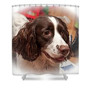 The Wonders Of Christmas Shower Curtain