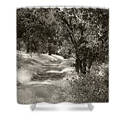 The Wooded Path Shower Curtain