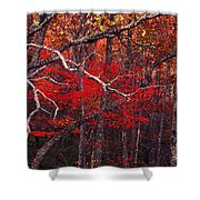 The Woods Aflame In Red Shower Curtain