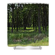 The Woods And The Road From The Series The Imprint Of Man In Nature Shower Curtain