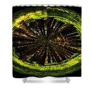 The Woods Polar View Shower Curtain