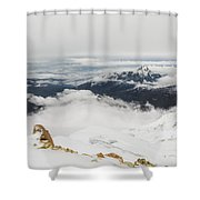 The World Is Mine Shower Curtain