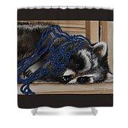 The Yarn Won Shower Curtain