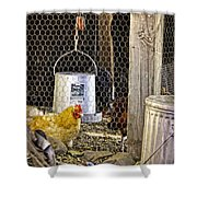 The Yellow Chicken Shower Curtain