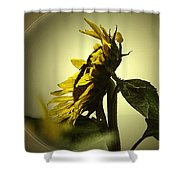 The Yellow Glow Shower Curtain