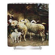The Young Shepherd Shower Curtain