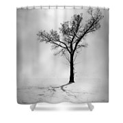 The Young Wind  Shower Curtain