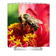 The Zinnia And The Bee Shower Curtain