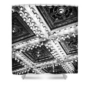 Theater Lights Shower Curtain