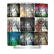 Theme With Variation Shower Curtain
