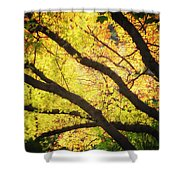 Then Autumn Arrives 03 Shower Curtain