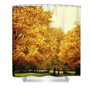 Then The Morning Comes 07 Shower Curtain