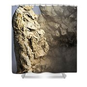 Theodore Roosevelt At Yellowstone Shower Curtain