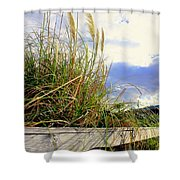 Therapeutic View Shower Curtain