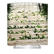 There Is No Stopping Nature Shower Curtain