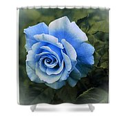 There Were Roses Triptych 2 Shower Curtain