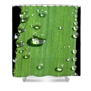 They Never Let Poor Rain Drop Join In Any Rain Drop Games Shower Curtain