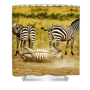 They See Me Rollin Shower Curtain